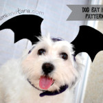 Dog bat wings hat patterns