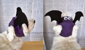 Bat wings patterns
