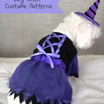 Dog witch costume patterns
