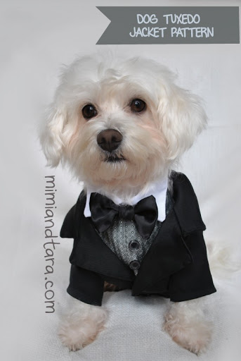 dog-tuxedo-jacket-pattern & Dog Tuxedo Jacket Patterns | PDF PATTERN | Mimi u0026 Tara