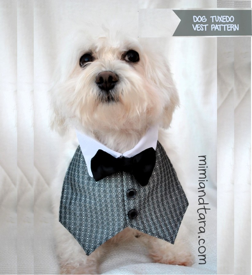 Dog Tuxedo Vest Pattern | FREE PDF DOWNLOAD