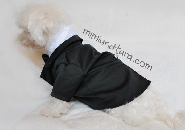 Tuxedo jacket dog