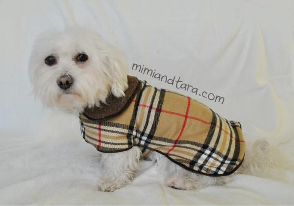 Coat doggy