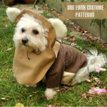 Ewok Dog Costume
