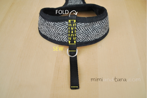 dog harness webbing