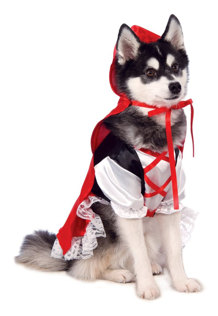 red riding dog costume