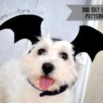 dog bat hat