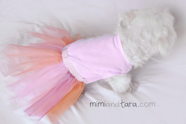 photo about Free Printable Sewing Patterns for Dog Clothes named Doggy costume habits No cost PDF Down load